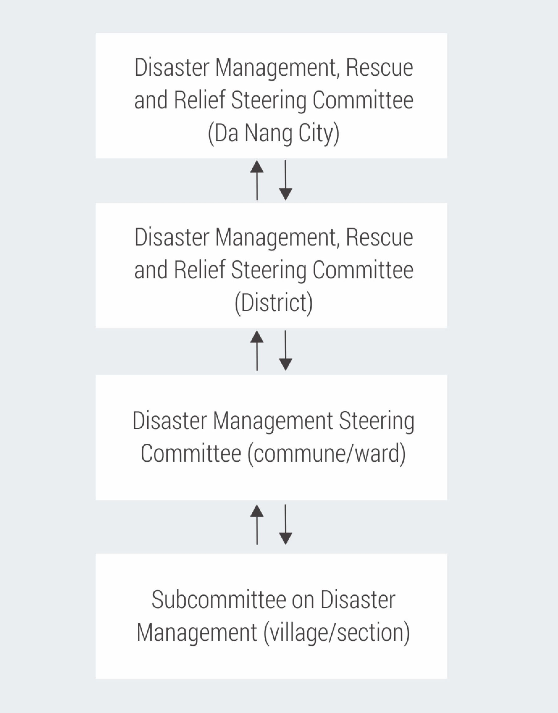Da Nang disaster management committees
