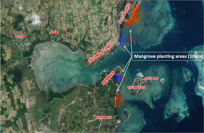 Map showing mangrove replanting locations