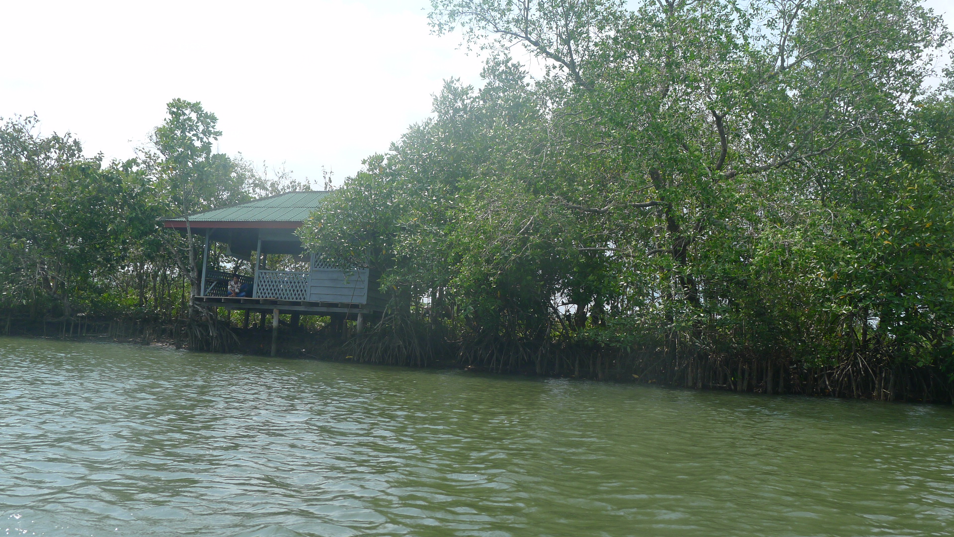 A house on the river bank with mangroves on either side