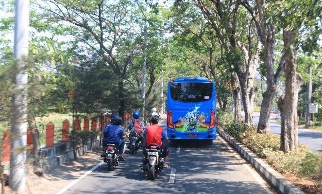 A bus and two motorcycles covered in shade by trees growing in a street island