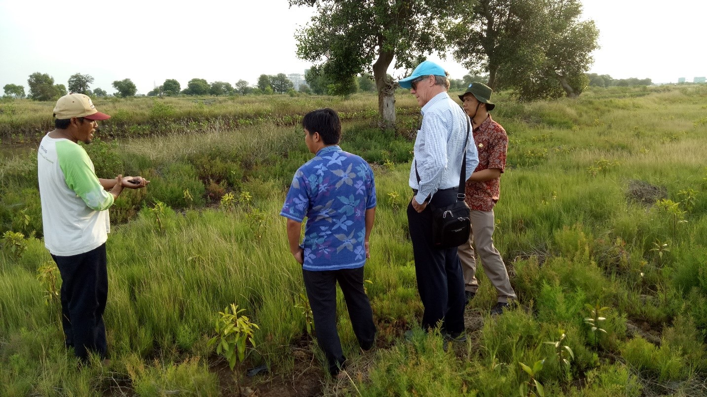 Tunas Harapan leader Mr Mulyana shows others an area of replanted mangroves