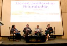Leaders of the Ocean Leadership Roundtable Dialogue